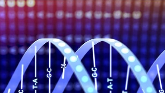 Artistic representation of DNA double helix and base pairs
