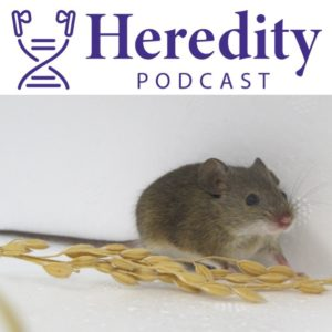 Heredity journal logo with mouse
