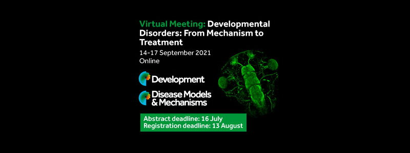 Developmental Disorders: From Mechanism to Treatment Thumbnail